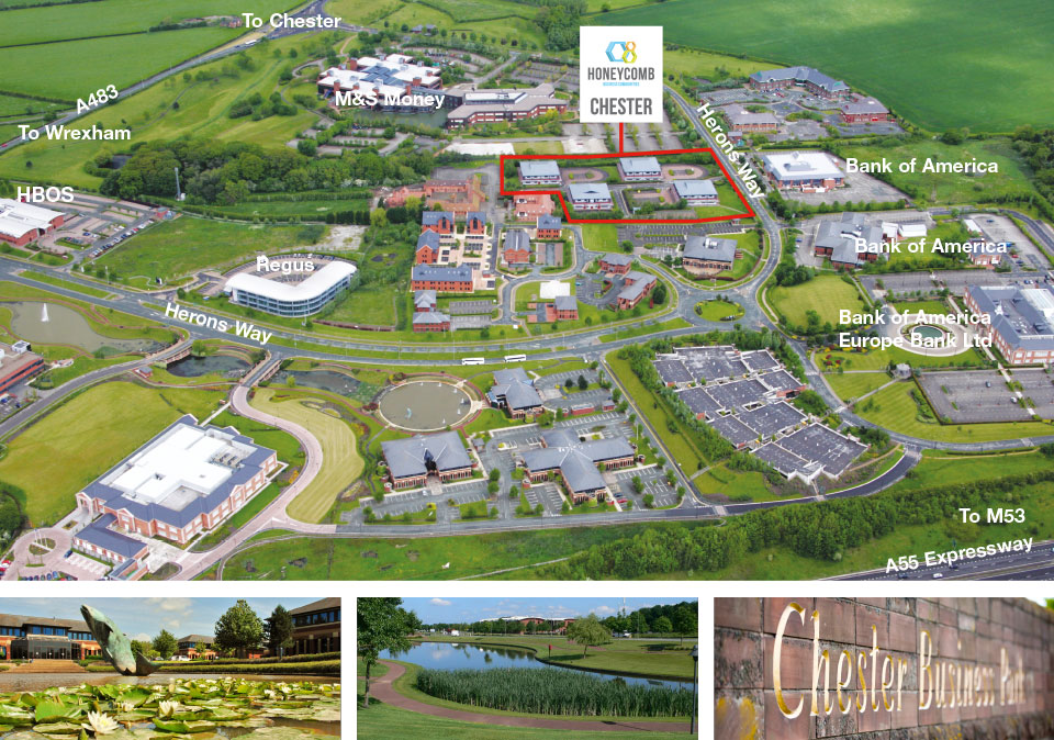 The park honeycomb chester business park chester ch4 9qh - Bristol myers squibb office locations ...
